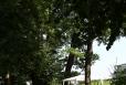 044_2013-08-03-10-38-47-img_9203_petr_bima
