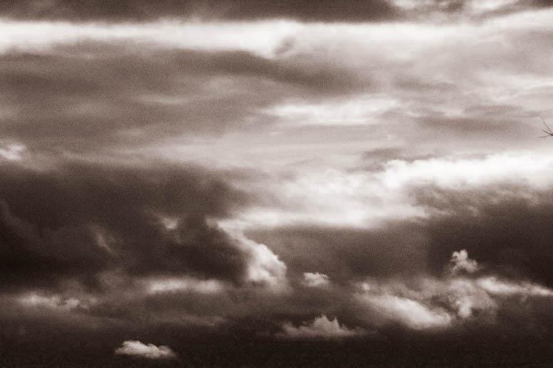 2010-11-13-15-15-44-img_5602