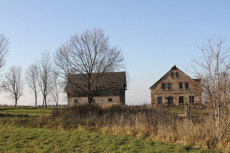 2011-11-12-15-04-48-img_8324
