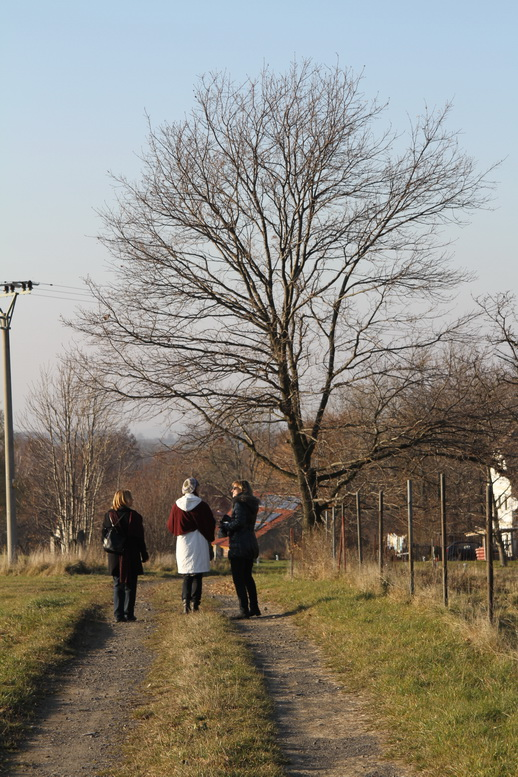 2011-11-12-15-12-34-img_8349